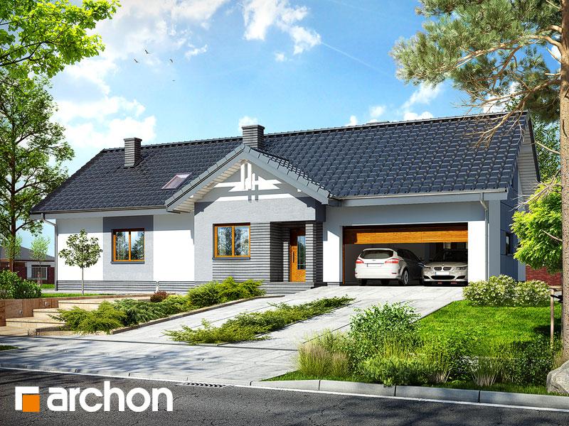 Dom w nerinach 2 (G2) - wizualizacja 1