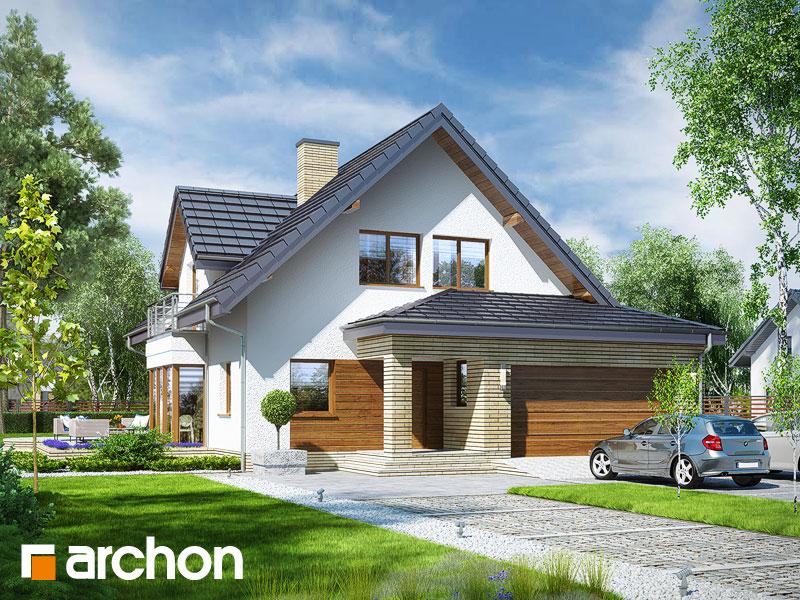 Dom w świetliku (G2N) - wizualizacja 1