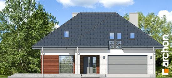 Dom-w-jarzebinach__264