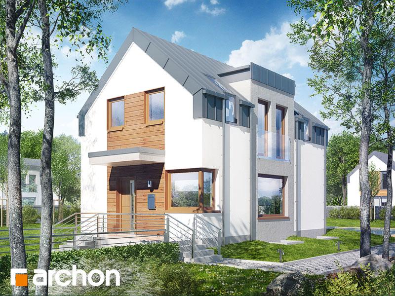 Dom w andromedach (P) - wizualizacja 1