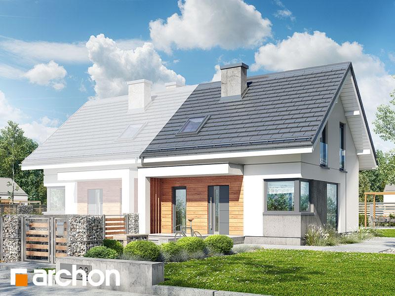 Dom w borówkach (BN) - wizualizacja 1