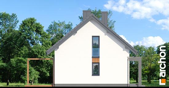 Dom-w-borowkach-n__265
