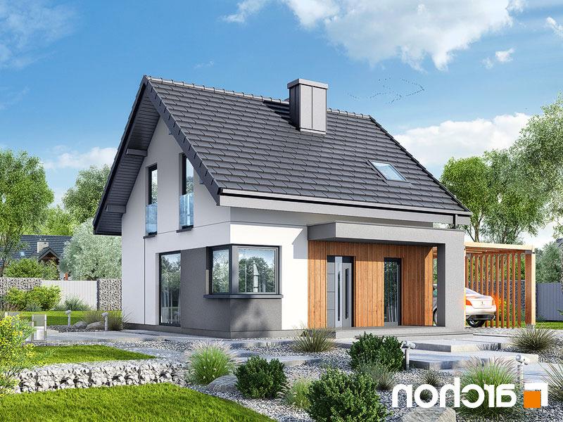 Dom-w-borowkach-n__289lo