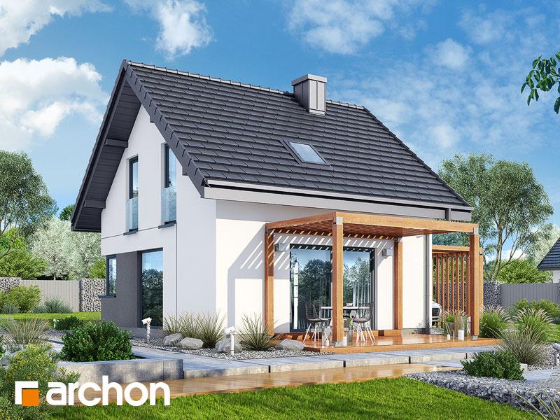 Dom w borówkach (N) - wizualizacja 2