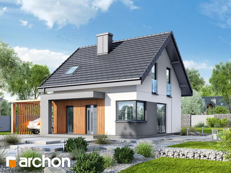 Dom w borówkach (N) - wizualizacja 1