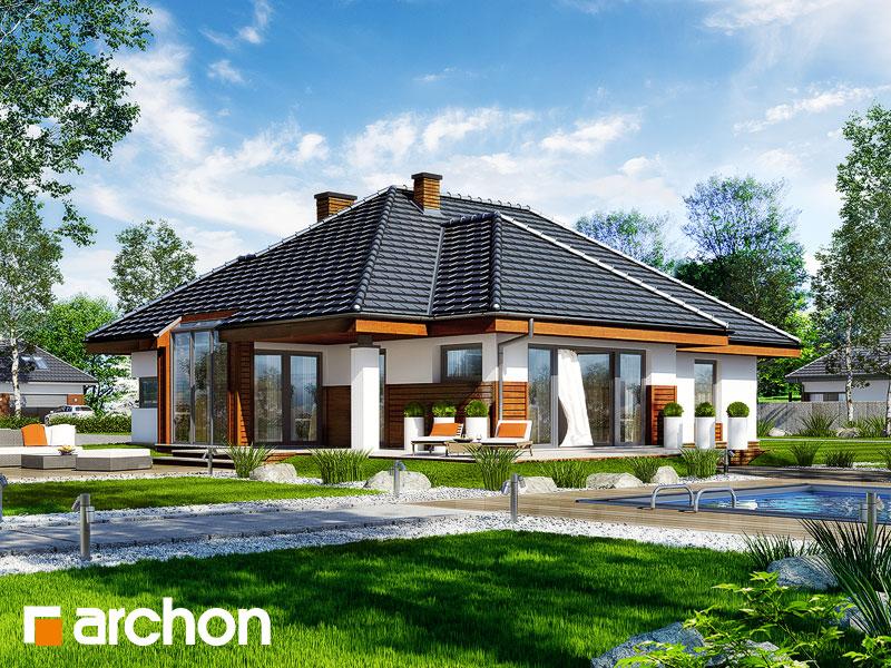 Dom w pigwowcach 2 - wizualizacja 1
