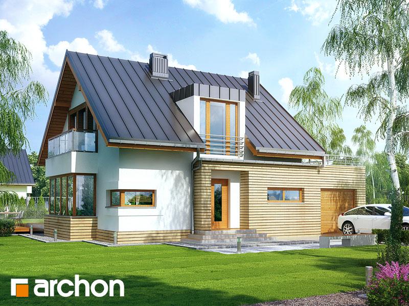 Dom w kardamonie - wizualizacja 1