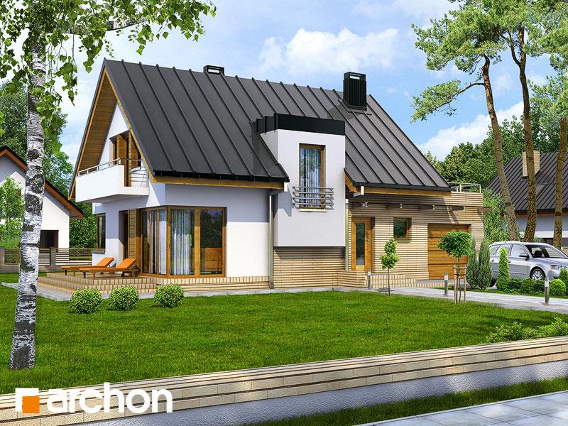 Dom w amarylisach - wizualizacja 1