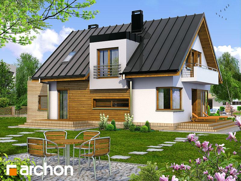 Dom w amarylisach - wizualizacja 2
