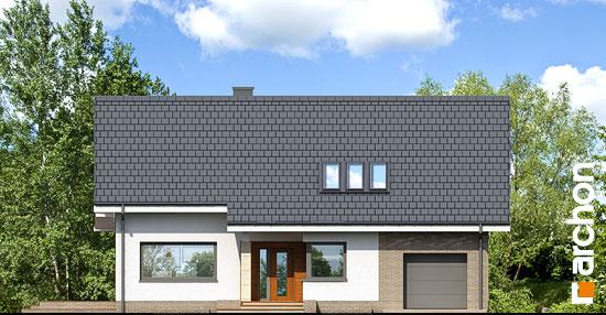 Dom-w-bugenwillach-p__264