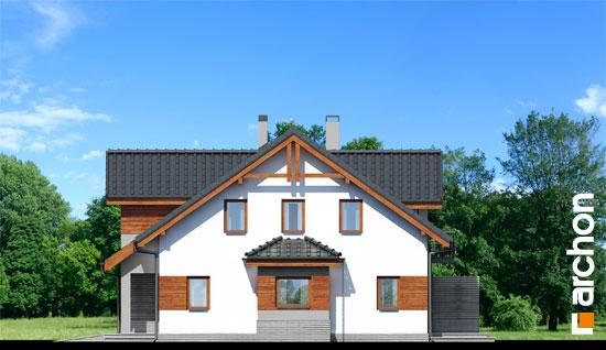 Dom-w-klematisach-9__265