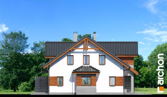 Dom-w-klematisach-9__266