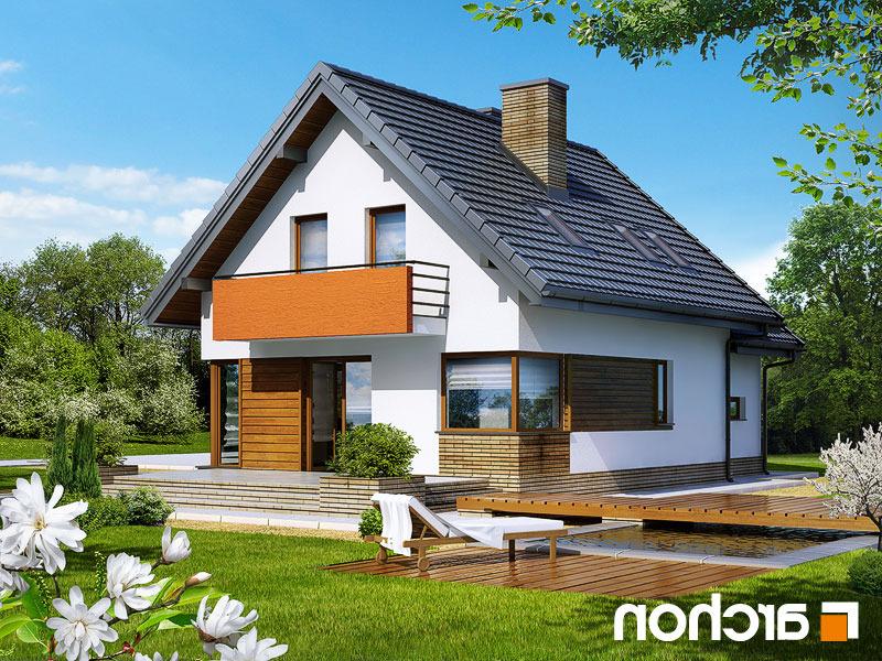 Dom-w-ananasach-n__290lo