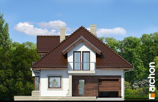 Dom-w-abeliach__264