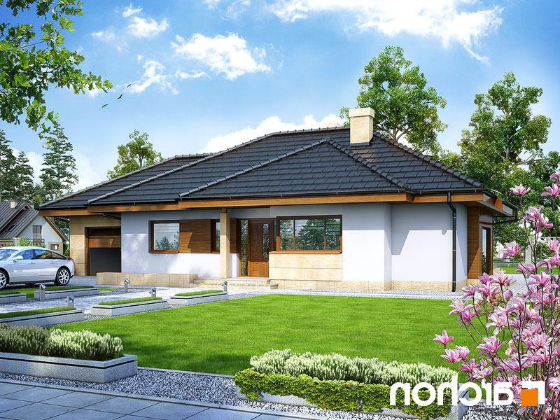 Dom-w-modrzykach__289lo