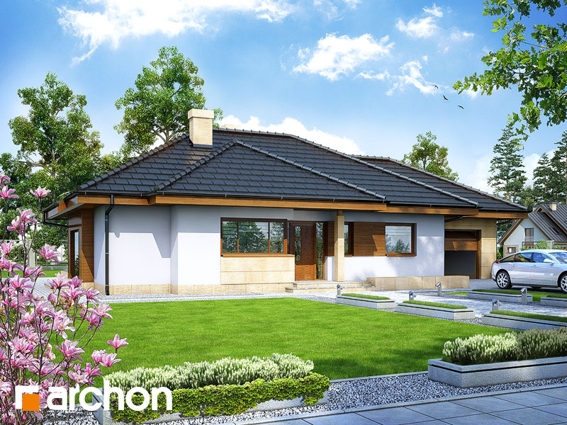 Dom w modrzykach - wizualizacja 1
