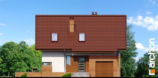 Dom-pod-liczi-p__264