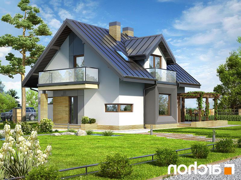 Dom-w-rododendronach-n__289lo