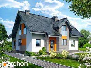 Dom w mniszkach 2