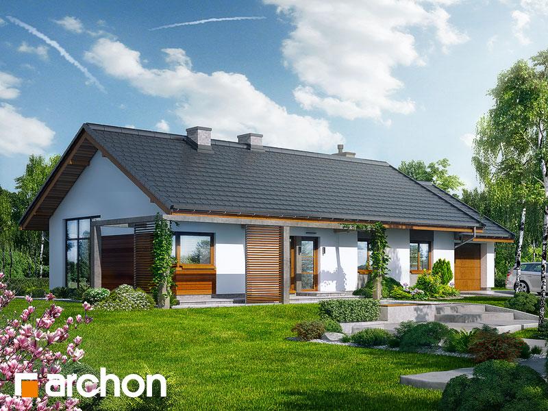 Archon Projekty Domow Parterowych