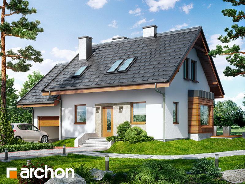Dom w perłówce 3 - wizualizacja 1