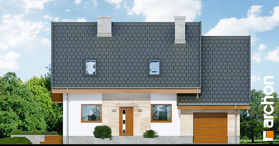 Dom-w-filodendronach__264