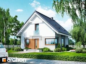 Dom w rododendronach 11 (N)