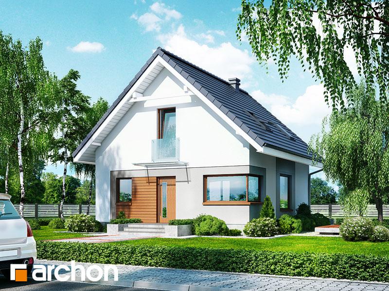 Nowoczesny Projekt Dom W Rododendronach 11 N