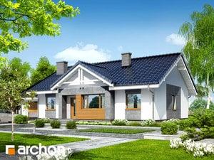 Dom w akebiach 4