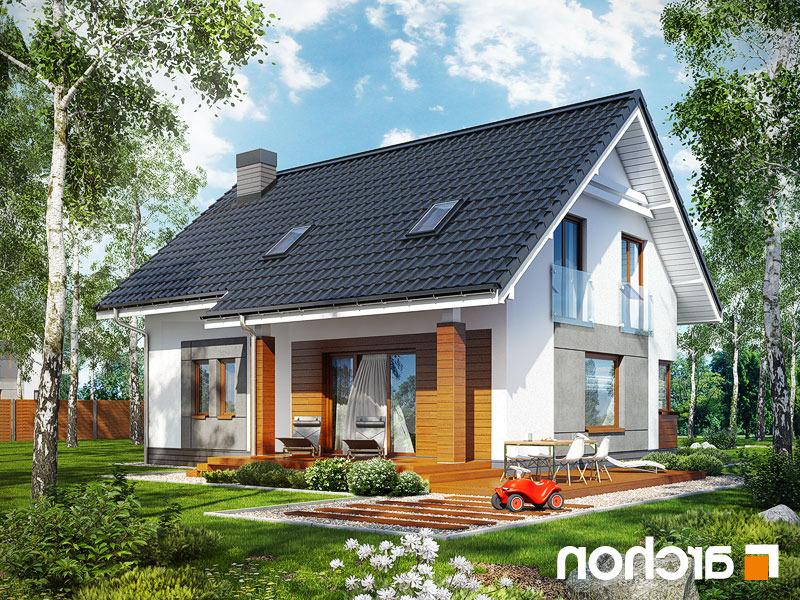 Dom-w-jablonkach__290lo