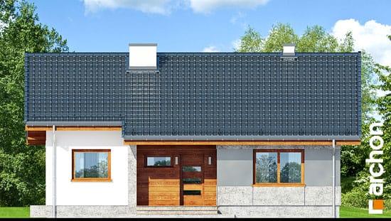 Dom-pod-lipka__264