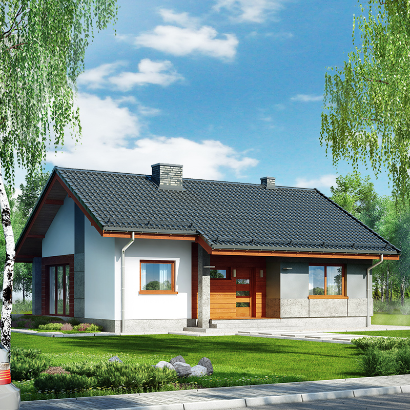 Dom pod lipką - wizualizacja 1