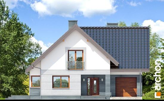 Dom-w-milowonkach__264