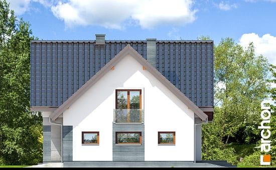 Dom-w-milowonkach__265