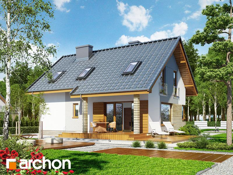 Dom w żurawkach (P) - wizualizacja 2