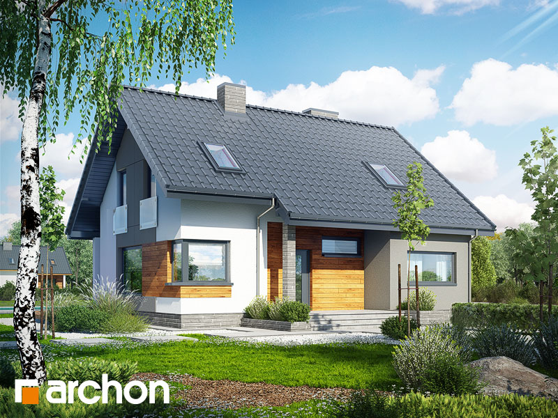 Dom w żurawkach 2 - wizualizacja 1