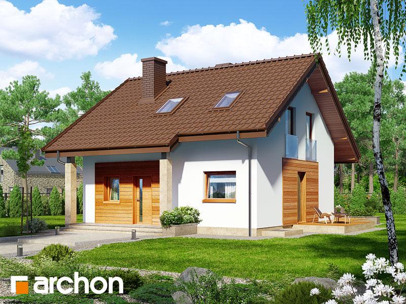 Dom w poziomkach (PN) - wizualizacja 1