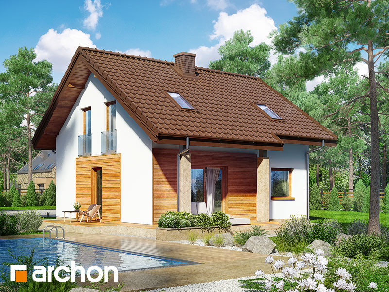Dom w poziomkach (PN) - wizualizacja 2
