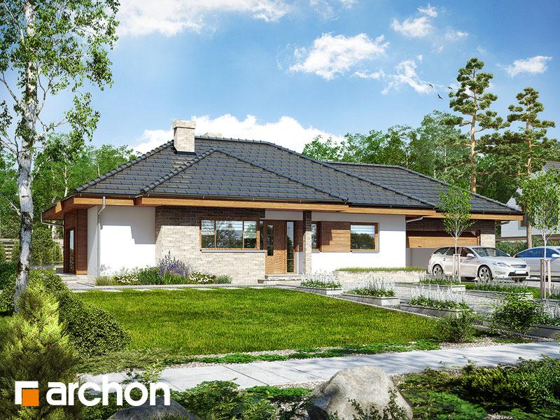 Dom w modrzykach (G2) - wizualizacja 1