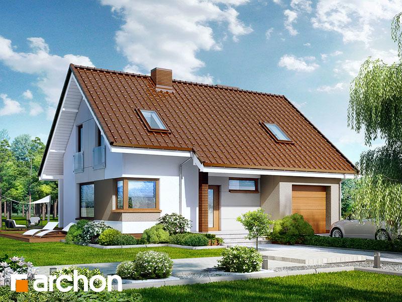 Dom w żurawkach (T) - wizualizacja 1