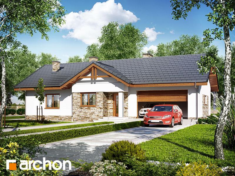 Dom w nerinach (G2) - wizualizacja 1