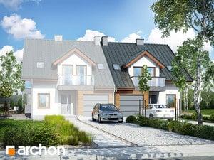 Dom w klematisach 15 (B)