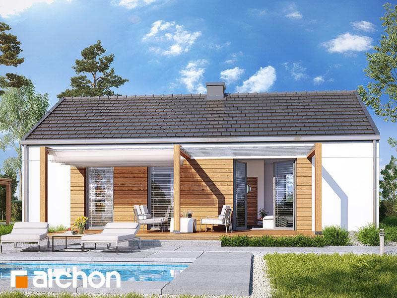 Dom w kruszczykach 3 - wizualizacja 1