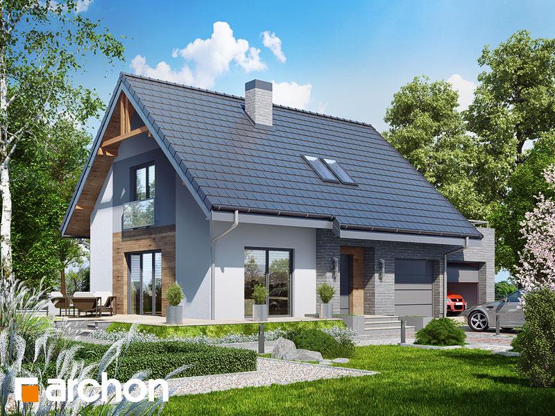 Dom w lucernie 4 (G2) - wizualizacja 1