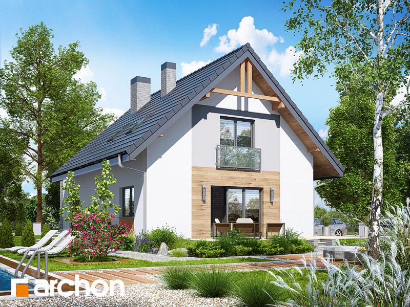 Dom w lucernie 4 (G2) - wizualizacja 2