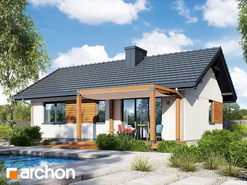 Dom w kruszczykach 2 - wizualizacja 2