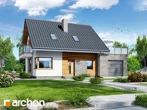 Dom w akantach 2