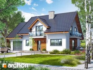 Dom w czerwonokrzewach (T)