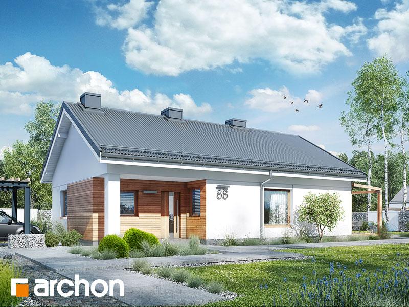 Dom w cedralach - wizualizacja 1