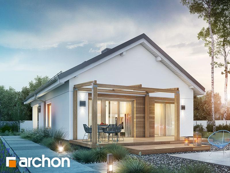 Dom w cedralach - wizualizacja 2